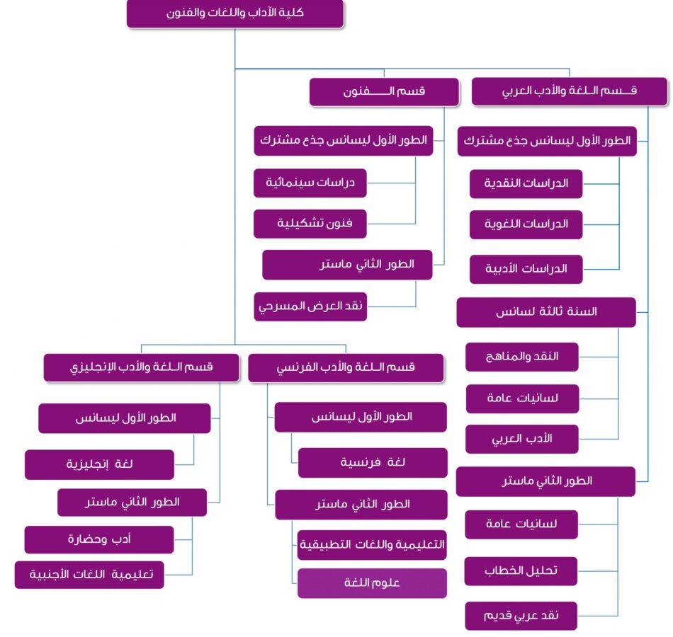 خريطة تكوين كلية الآداب واللغات والفنون