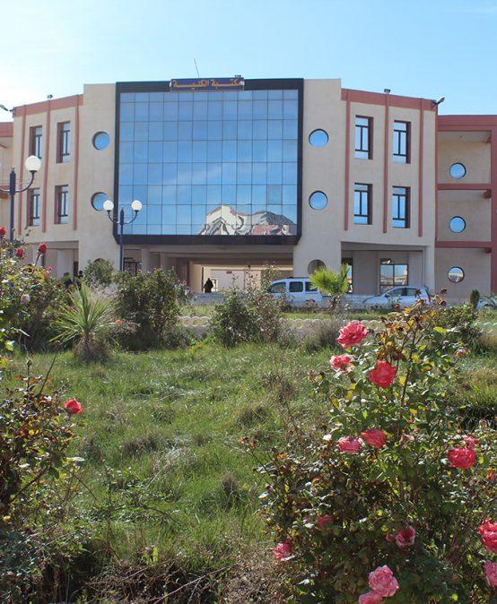 Appel à projets de partenariat institutionnel Algero-francais. PROFAS C+