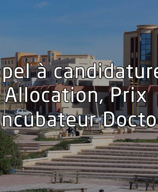Appel à candidatures – allocation, prix et incubateur doctoral