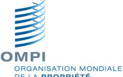 L'Organisation Mondiale de la Propriété Intellectuelle ajoutée le CATI de Saida sur le site de l'OMPI